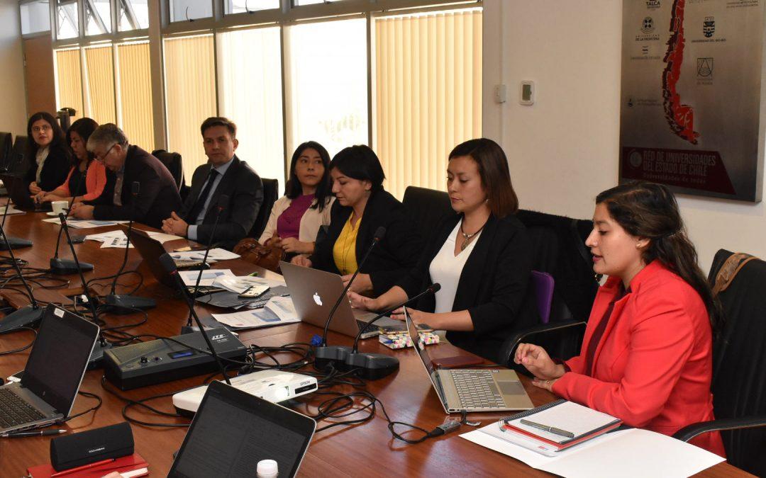 Presentaron avances del Proyecto de Alfabetización en Salud a analistas del Ministerio